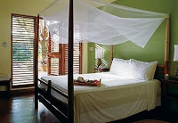 rock house hotel in jamaica