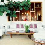 Nature in a room: Fiddle Leaf Fig
