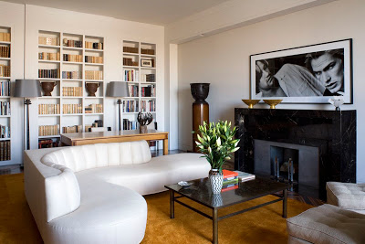 library with black marble fireplace and wood floor