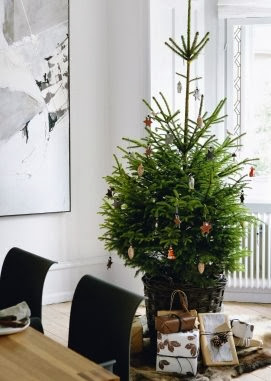 White Christmas decor via belle vivir blog