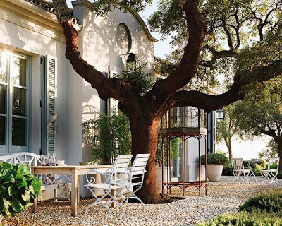 Provencal Gardens gravel and shutters and a strong tree in marbella