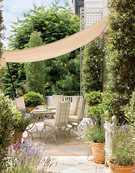 Exceptional rooftop garden lauren santo domingo paris garden belle vivir blog