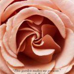 Oprah Winfrey's Rose Garden: A spiritual Oasis