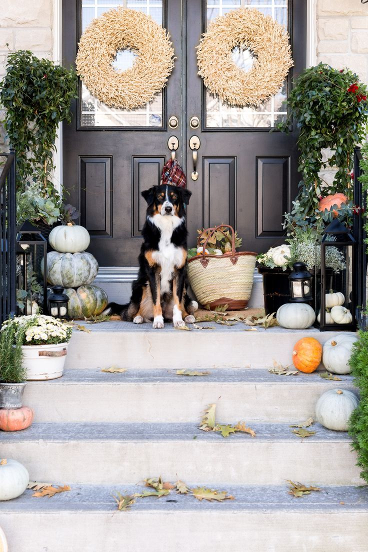 Thanksgiving Decorating Ideas From Tabletop To Main Entrance